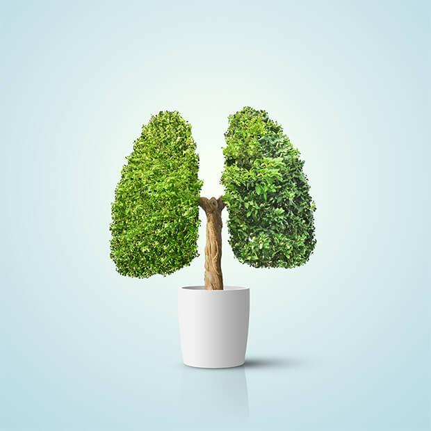 Όλοι οι τύποι καρκίνου πνεύμονα είναι ίδιοι